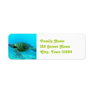 Antigua Hawk Billed Turtle Return Address Label