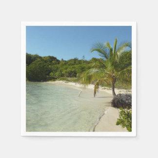 Antiguan Beach Beautiful Tropical Landscape Paper Napkins