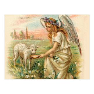Antique Angel Feeding A Lamb Postcard