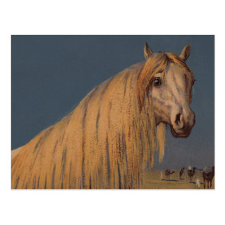 Antique Art Twilight Desert Arabian Horse Postcard