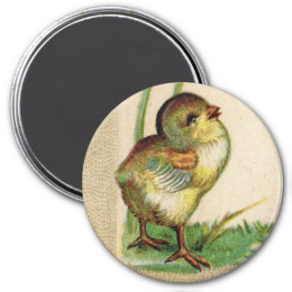Antique Baby Easter Chick Round Magnet