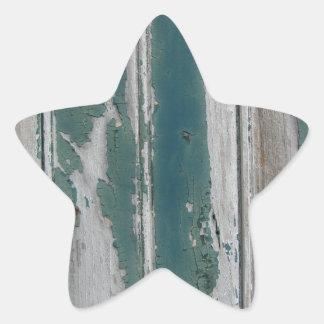 Antique bark pattern star sticker