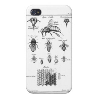 Antique Bees & Honeycomb Cover For iPhone 4
