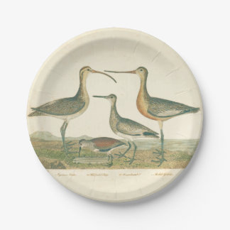 Antique Bird Print Marsh Coastal 7 Inch Paper Plate