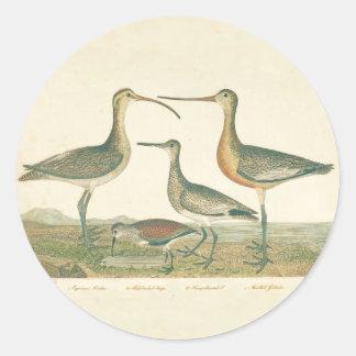 Antique Bird Print Marsh Coastal Round Sticker