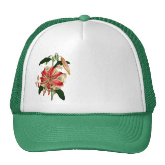 Antique Botanicals Pink and White Lily Mesh Hats