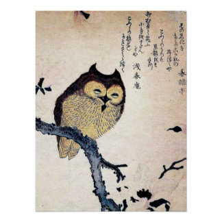 Antique Chinese Owl Print Poster