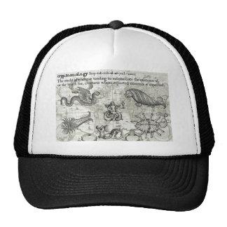 Antique Cryptozoology Hat