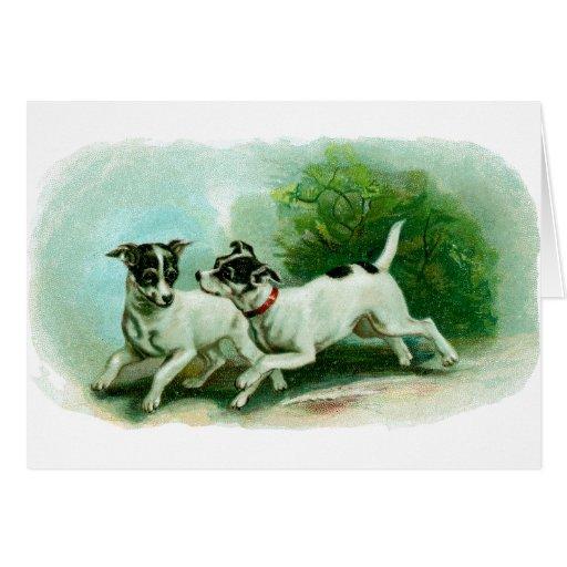 Antique Fox Terrier Illustration Card