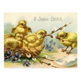 Antique Happy Easter chicks egg hatch Postcard