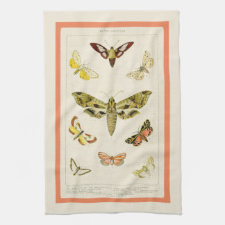 Antique Inspired Chart of American Moths Tea Towel
