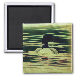 Antique Look Loon on The Water Magnet