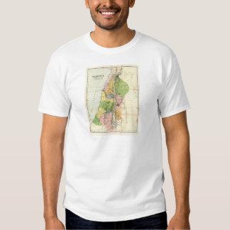 Antique Map - Biblical Palestine Tees