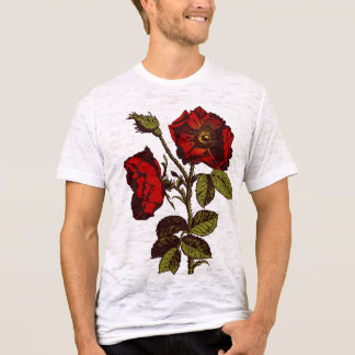 Antique Red Rose T-Shirt