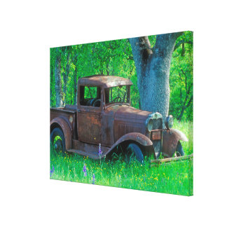 Antique rusted truck in a meadow canvas print