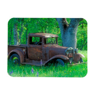Antique rusted truck in a meadow magnet