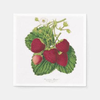 Antique Strawberry Print Napkin Paper Serviettes