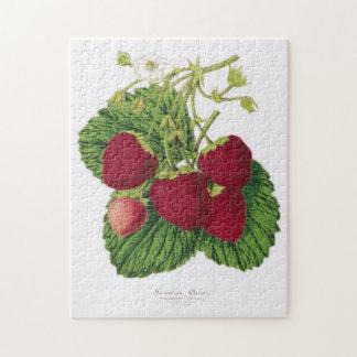 Antique Strawberry Print Puzzle