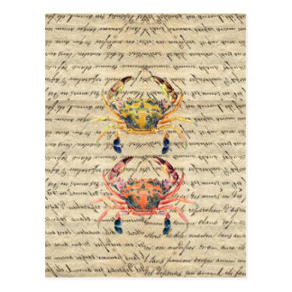 Antique Vintage crab illustration Postcard