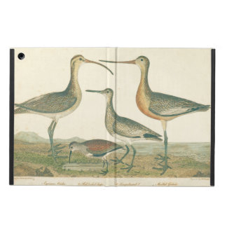 Antique Water Birds Marsh Illustration Case For iPad Air