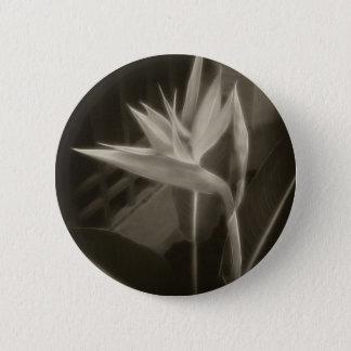 Antiqued Bird of Paradise 10 6 Cm Round Badge