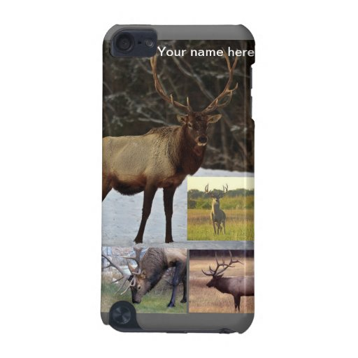 Antlered animals iPod touch (5th generation) case