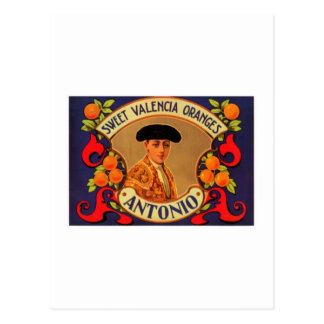 Antonio Sweet Valencia Oranges Postcard