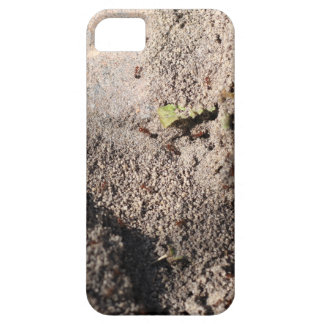 Ants Go Marching iPhone 5 Case