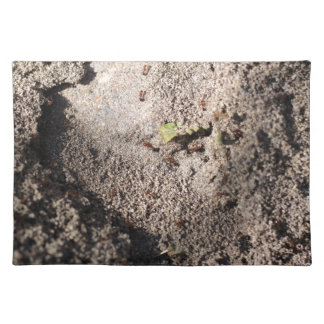 Ants Go Marching Placemat