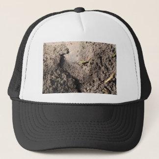 Ants Go Marching Trucker Hat