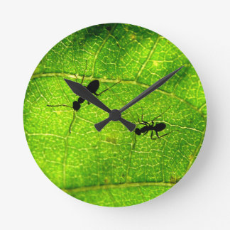Ants Green Acre Round Clock