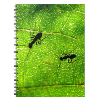 Ants Green Acre Spiral Notebook