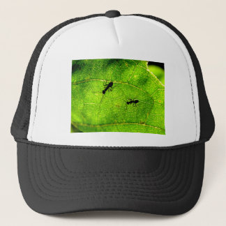 Ants Green Acre Trucker Hat