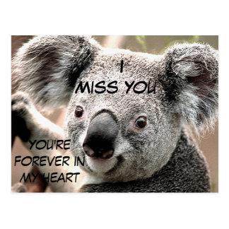 Any Occasions,Koala Bear_ Postcard