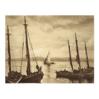 Anyone for Oysters!  Fishing boats Postcard