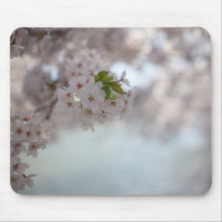 Aomori Sakura Festival Mouse Pad