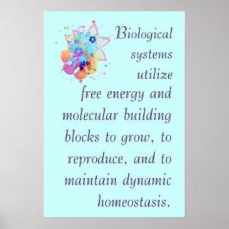 AP Biology Big Idea 2 Poster