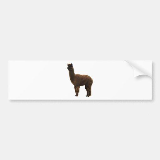 Apaca stud bumper stickers