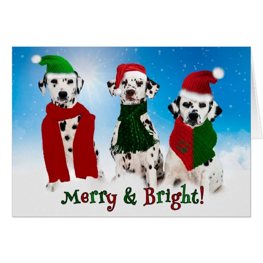 APAL - Christmas Dalmatian Dogs in the Snow Card