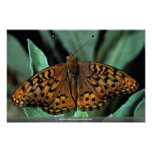 Aphrodite on green leaves poster