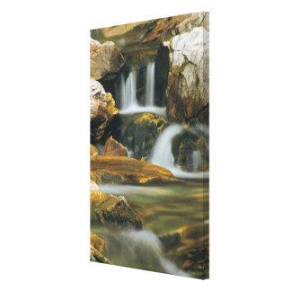 Apikuni Falls in Glacier National Park, Montana Canvas Print