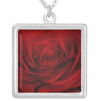 Aplotomy Of The Heart Square Pendant Necklace