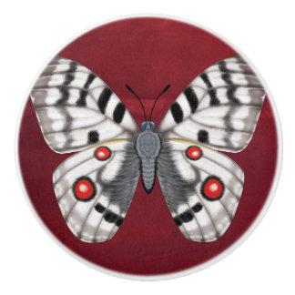 Apollo Butterfly Ceramic Knob