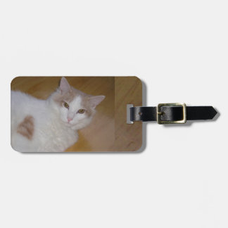 Apollo the Turkish Van Luggage Tag