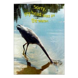 APOLOGY CARD