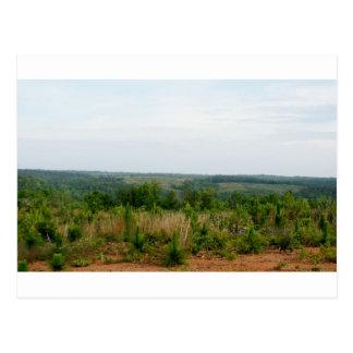 Appalachian Mountain Foothills Postcard