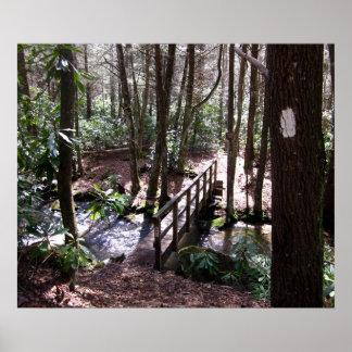 Appalachian Trail bridge at Laurel Fork Tennessee Poster
