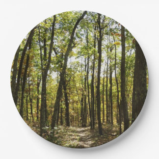 Appalachian Trail in October Paper Plate