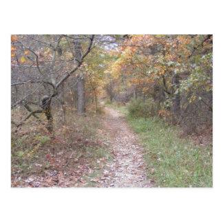 appalachian trail pennsylvania fall postcard