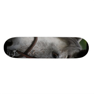 appaloosa-18 Sateboard Skateboards